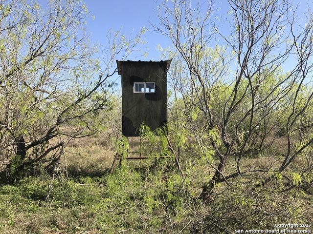 Country Road 332, Jourdanton, TX 78206