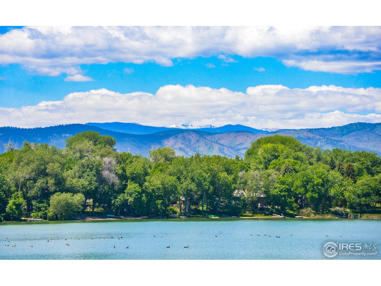 1705 Linden Lake Rd, Fort Collins, CO 80524
