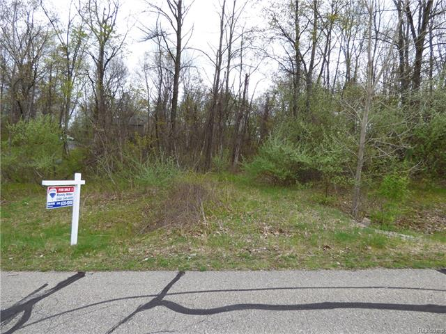 000 High Meadows Drive, Brandon Twp, MI 48462