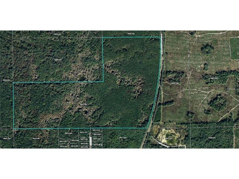 10739 SPRING WARRIOR ROAD, PERRY, FL 32348