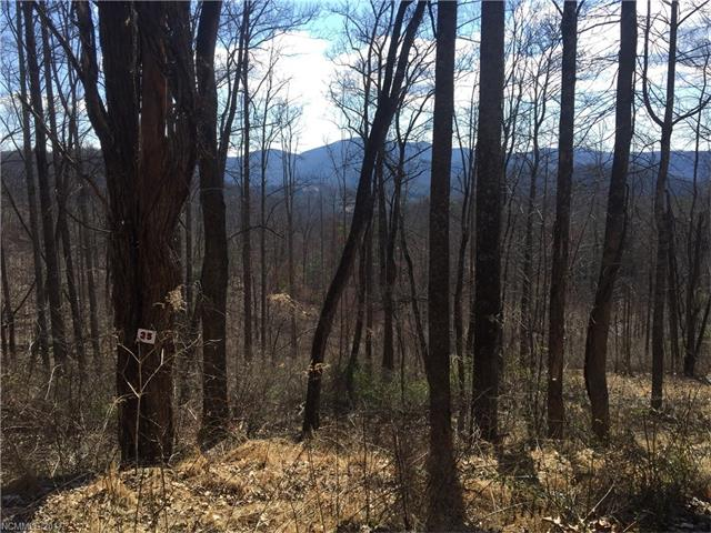 Lace Falls is a well maintained/ well planned community in the Edneyville area. LOT# 35 is a level to gently sloping lot, mountain views possible w/ some tree removal/ topping. Private country feel but only 15 minutes to 4 Seasons Blvd.