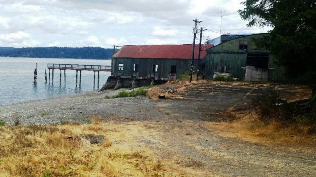 161 N Canal Hide-a-way, Lilliwaup, WA 98555