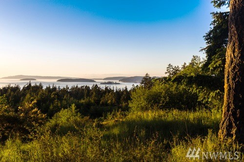 1 Outlook Lane, Friday Harbor, WA 98250