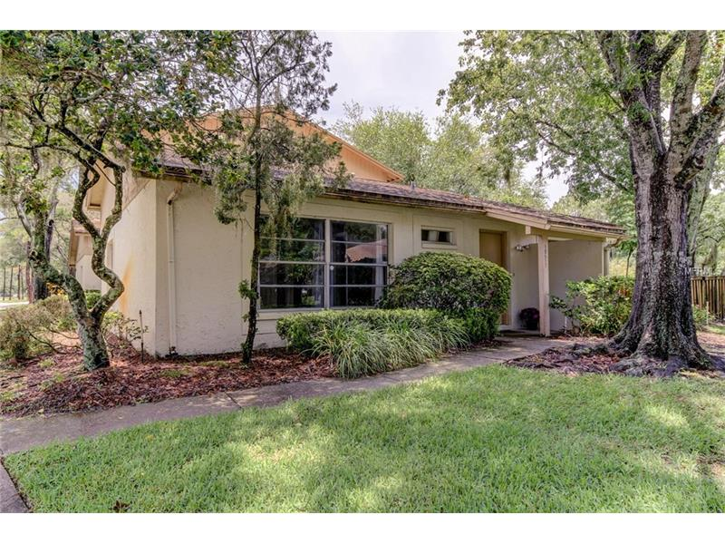 15517 MORNING DRIVE, LUTZ, FL 33559