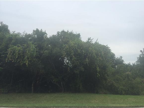 1071 BLUE HILL CREEK 1071, MARCO ISLAND, FL 34145