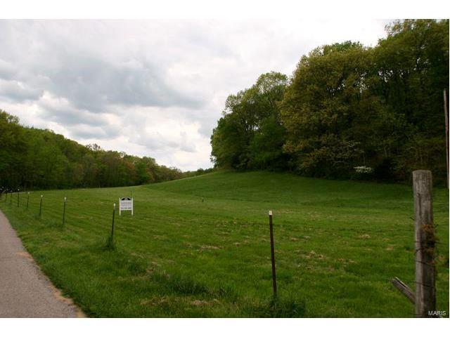 1407 Yuletide Trail Road, Wildwood, MO 63005