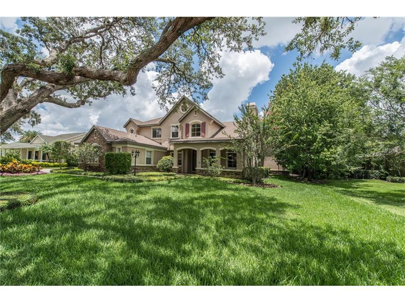 6201 WILD ORCHID DRIVE, LITHIA, FL 33547