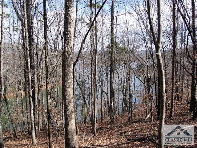 Lot 5 Pine Ridge, Elberton, GA 30635