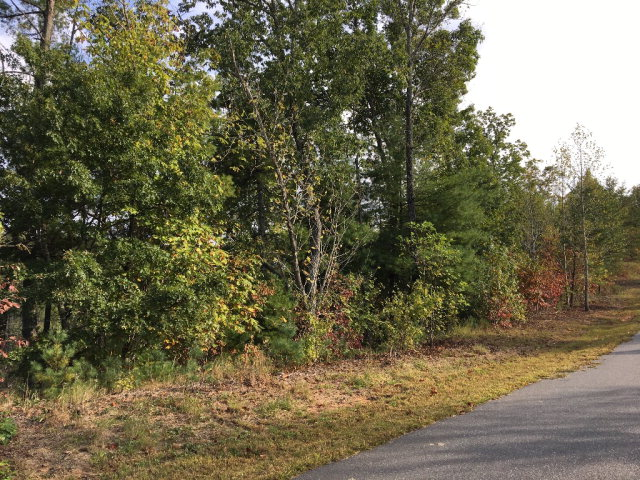 Lot #41 Winghaven Dr., Nebo, NC 28761