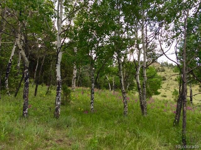 14745 Wetterhorn Peak Trail, Pine, CO 80470