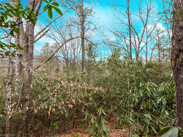Nice buildable lot with beautiful trees and peaceful surroundings.  Conveniently located to Hendersonville, Bat Cave and Lake Lure.  Must see to appreciate.  Very Motivated Seller