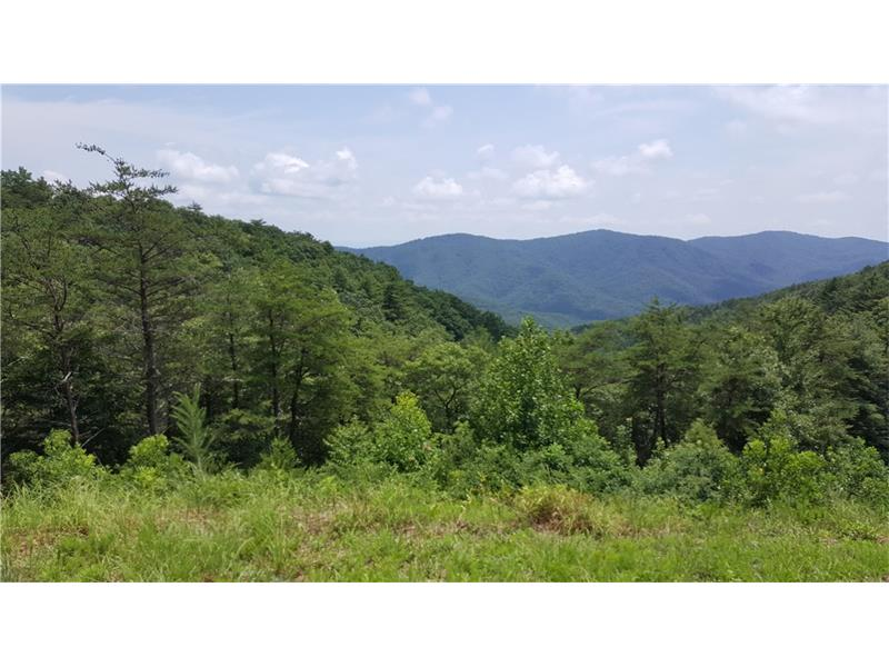 Lot 42 Hwy 52, Chatsworth, GA 30705