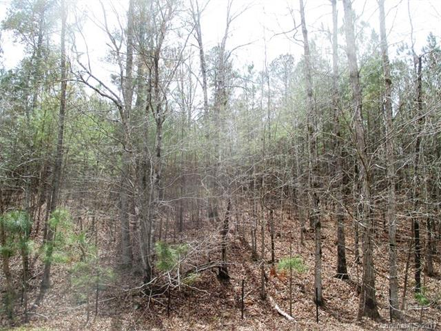 Lt 76 Lakeside Trail, Lilesville, NC 28091