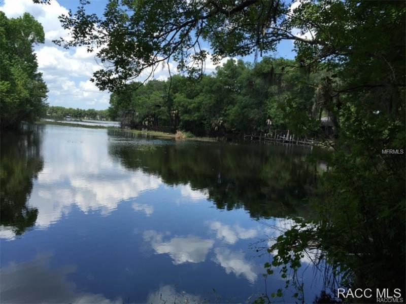 1500 S HOMESTEAD POINT, INVERNESS, FL 34450