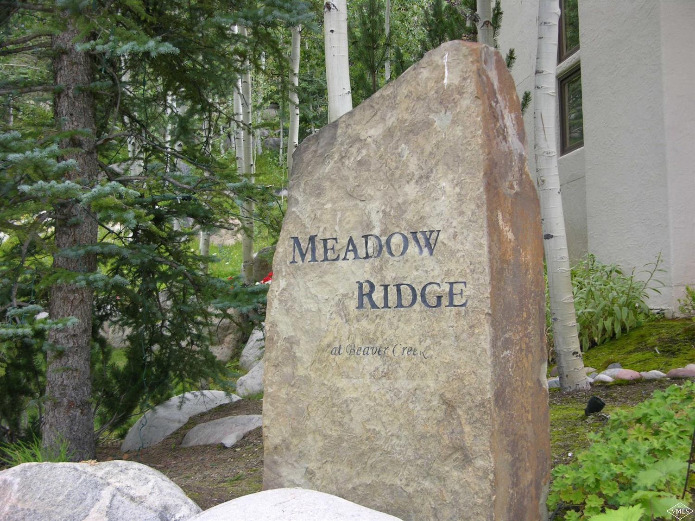 17 Meadow Court, Beaver Creek, CO 81620