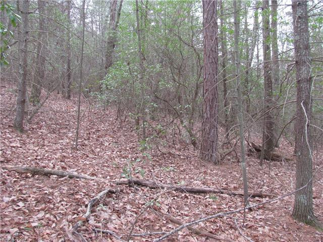 51 High Top Mountain Road, Leicester, NC 28748