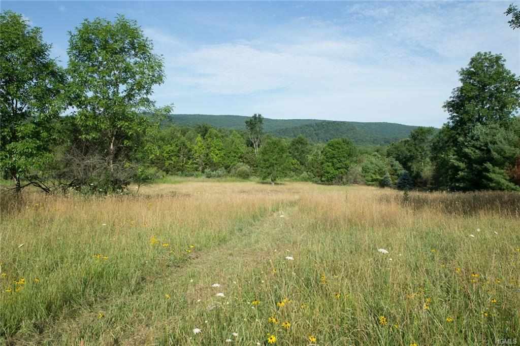 Route 22, Wingdale, NY 12594