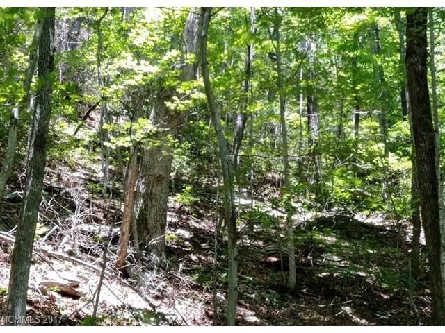Poplar Trail 19, Barnardsville, NC 28709