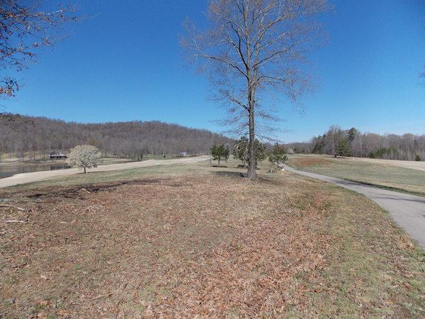0 Golfview Dr, Decaturville, TN 38329