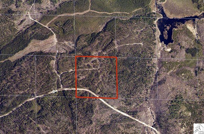 TBD Holm Rd, Cook, MN 55723