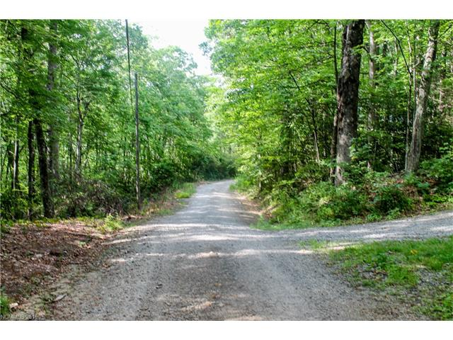 Wooded lot in Beautiful Gerton. V shaped on a hillside. Come by and see! No mobiles allowed.
