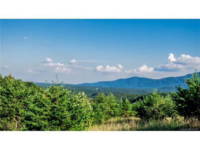 0000 Birkdale Drive 157, Mill Spring, NC 28756