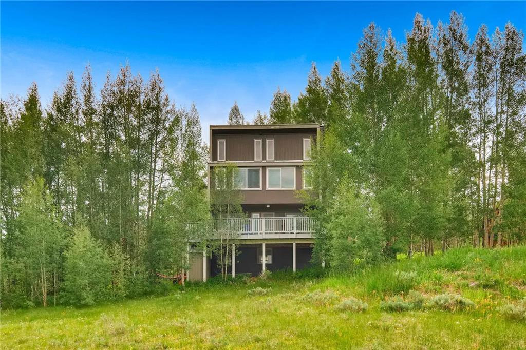 66 Royal Red Bird DRIVE, SILVERTHORNE, CO 80498
