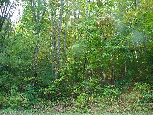 ENJOY BREATHTAKING MOUNTAIN VIEWS. WONDERFUL WOOD ACREAGE IDEA FOR YOUR DREAM HOME! TAKE IN MAJESTIC MOUNTAIN RANGES FROM THE TOP OF THE PROPERTY. LEVEL BUILDING SITE. CONVENIENT TO LAUREL PARK SHOPPING CENTER & DOWNTOWN HENDERSONVILLE.