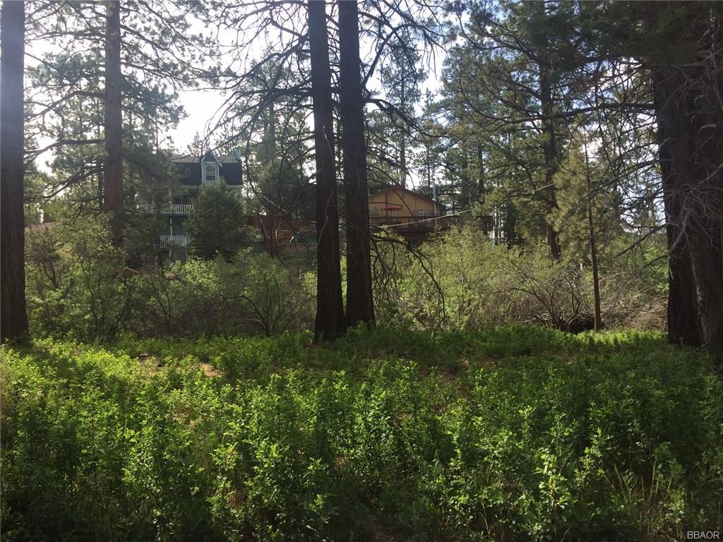 619 Rosehill, Big Bear City, CA 92314