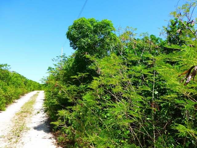 ELEUTHERA ISLAND SHORES, Eleuthera,  00008