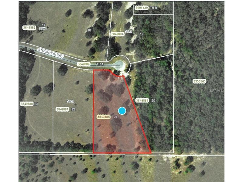 5612 STRONG POINT, WEIRSDALE, FL 32195