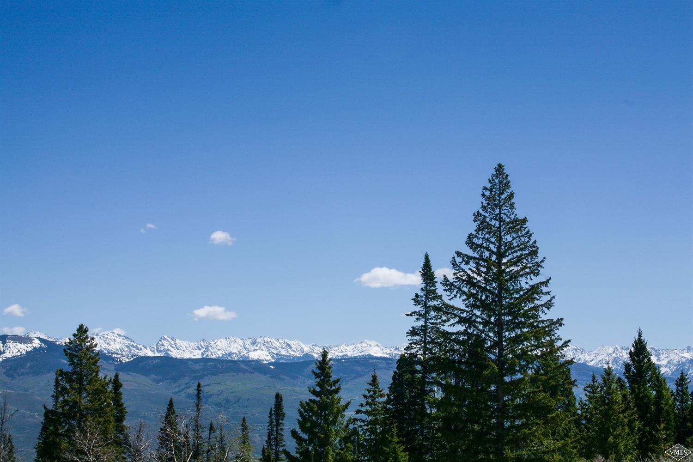 1251 Gore Trail, Edwards, CO 81632