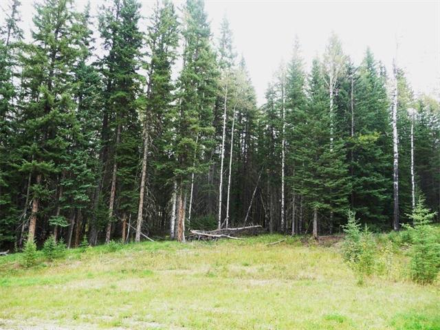 Lot 4 Little Red Estates, Rural Mountain View County, AB T0M 2E0