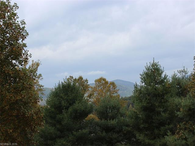 Mountain VIEW lot in Beautiful Blacksmith Mountain. Coveted cul-de-sac setting. 4 Bedroom septic permit on file. City water available. Underground electric nearby. 1.2 AC Minutes to DT Hendersonville. Community affords use of Clubhouse and Pool. Don't miss this opportunity!