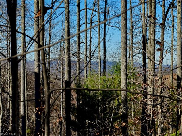 Fabulous long range mountain and lake view ! This beautiful building site offers gentle terrain for ease in building, trees, availability of public water and sewer, community amenities and more! Plan to break ground on your dream home this spring! Call for covenants and building guidelines.