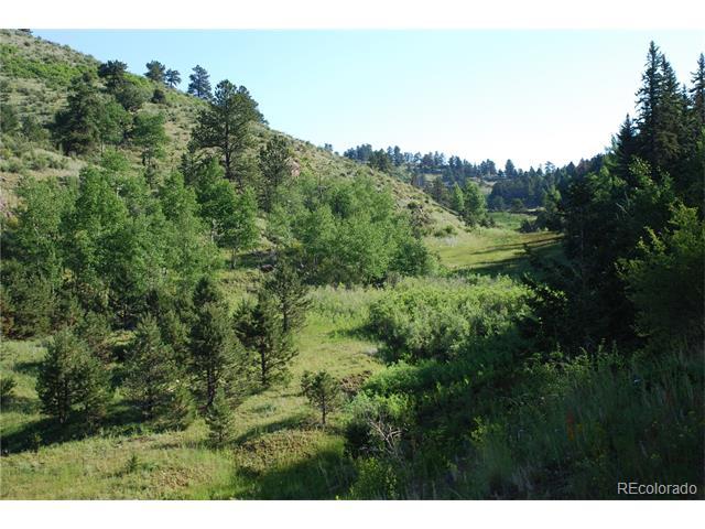 County 1 Road, Cripple Creek, CO 80813