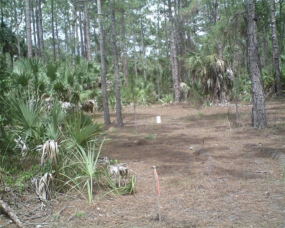 Pheasant Roost Trail TRL, NAPLES, FL 34117