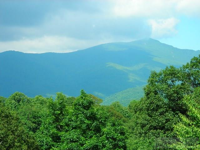 402 Spruce Pine Trail, Blowing Rock, NC 28605