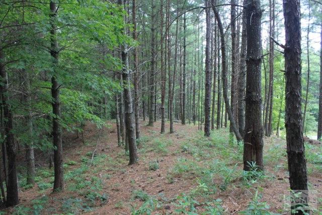 9587 Shortoff View Terrace, Nebo, NC 28761