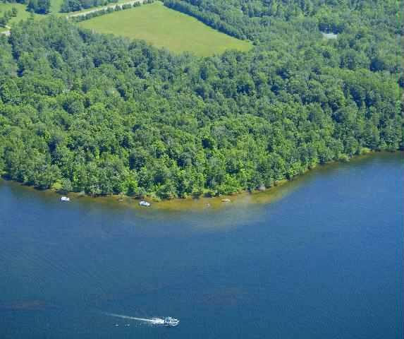 TRACT 6 TAME FISH LAKE RD, Deerwood, MN 56444