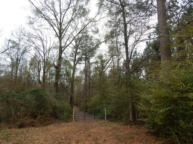 08 Magee Hill Rd, Tylertown, MS 39667