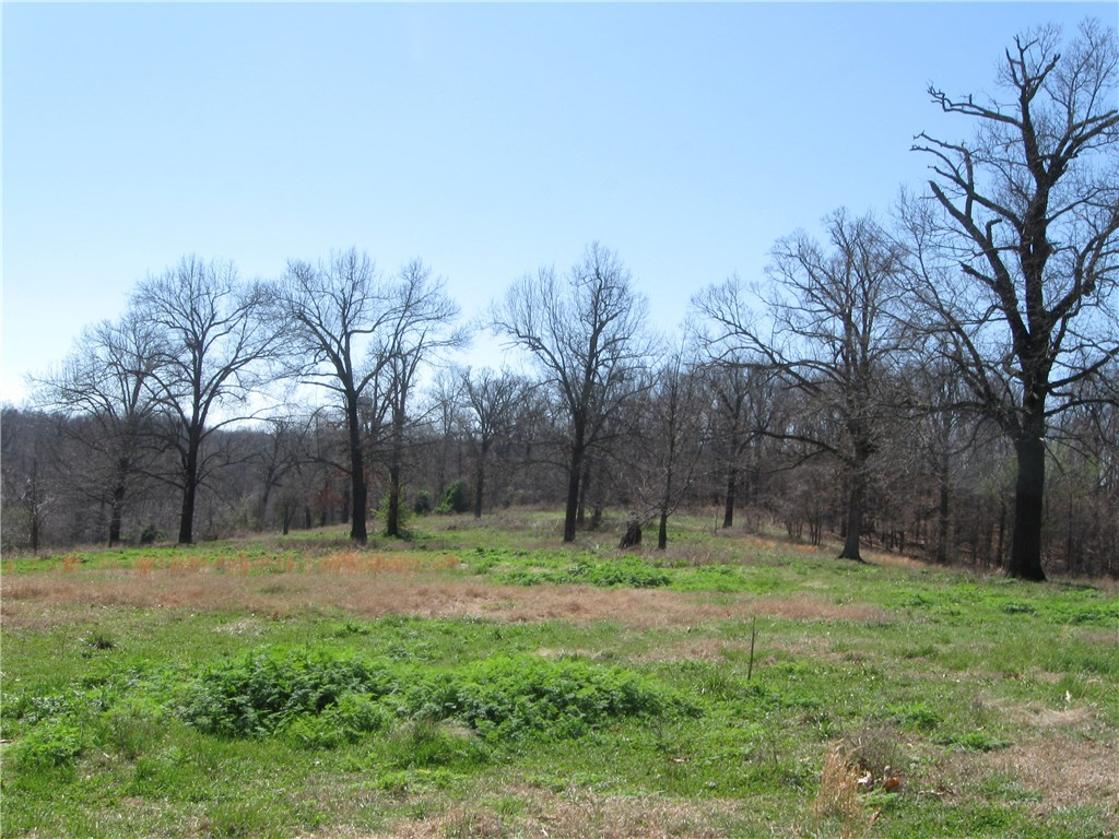 73 ac Wager RD, Springdale, AR 72718