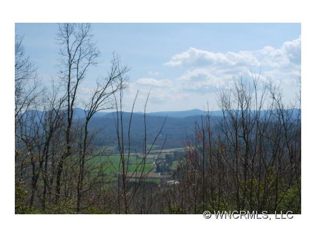 19 Hawkins Hollow Road 19, Pisgah Forest, NC 28768