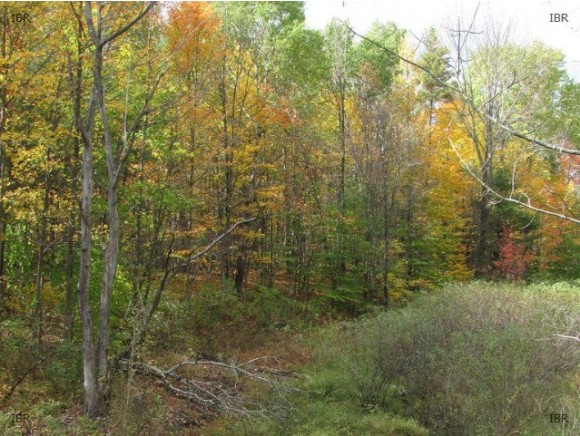 LOT 5 HUNT HILL ROAD, Dryden, NY 14850
