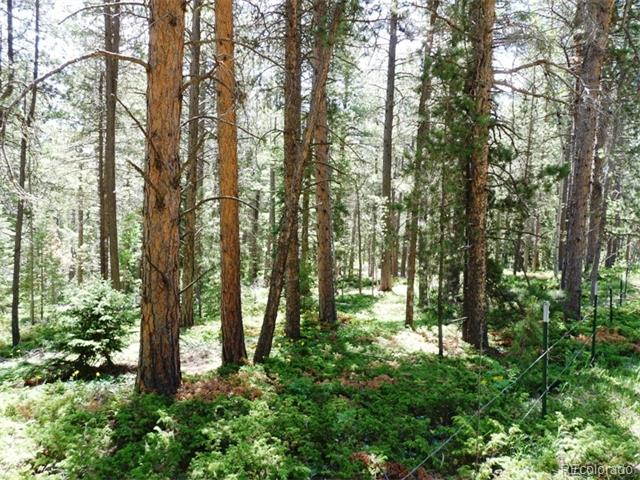 Wallace Avenue, Conifer, CO 80433