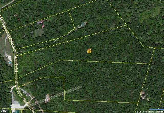 0 Williamson Branch Rd, Vanleer, TN 37181