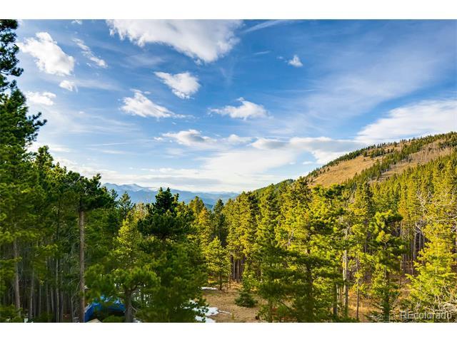 451 Mountain View Drive, Idaho Springs, CO 80452