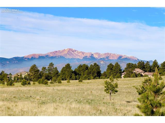 16191 Open Sky Way, Colorado Springs, CO 80908
