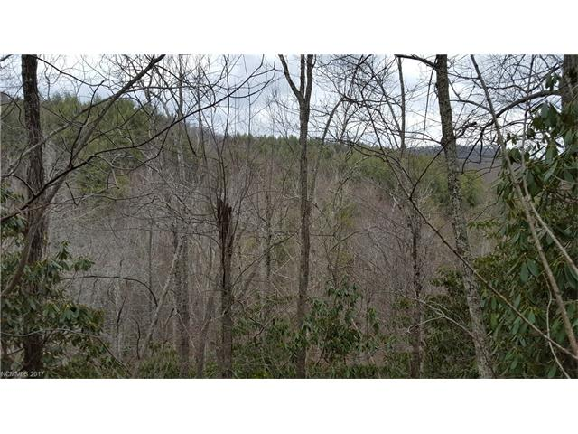 1783 Miller Cove Road 41, Black Mountain, NC 28711
