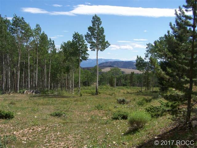tbd FOREST ROAD NO. 214, Salida, CO 81201